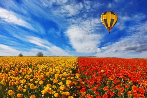 hot air balloon tours in Israel - Nes Mobile